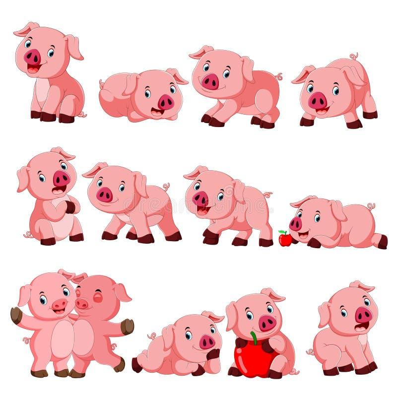 Collection de porc mignon avec la diverse pose illustration libre de droits
