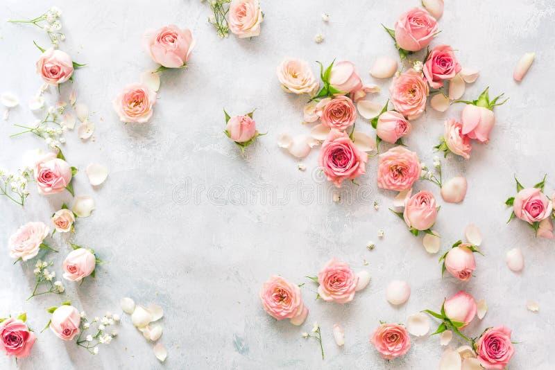 Collection de roses et de pétales disposés sur le fond texturisé photo libre de droits