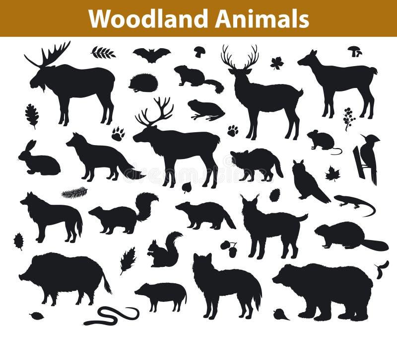 Collection de silhouettes d'animaux de forêt de région boisée illustration stock