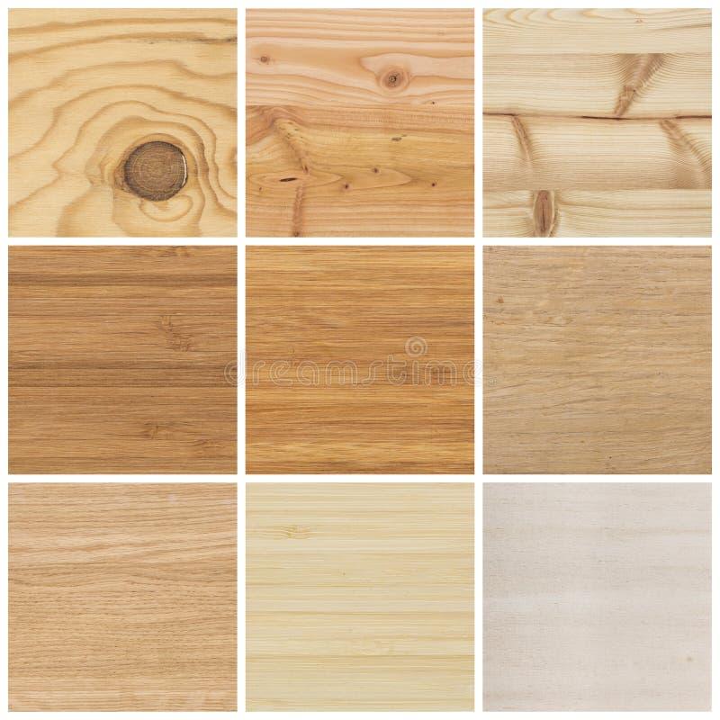 Collection de textures en bois lumineuses photographie stock libre de droits