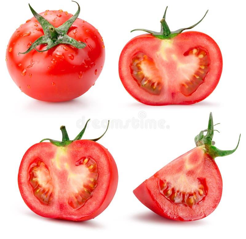 Collection de tomates d'isolement sur le fond blanc images stock