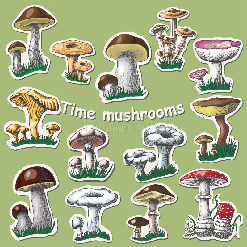 Collection de vecteur de champignons d'isolement Éléments d'autocollant illustration libre de droits