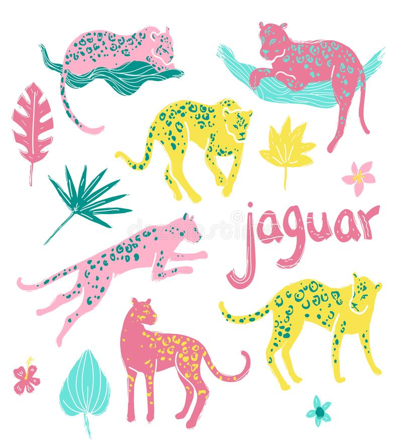 Collection de vecteur de jaguars Animaux et végétaux sauvages tropicaux dedans illustration de vecteur