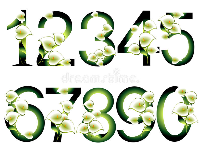 Collection of decorative numbers. vector illustration