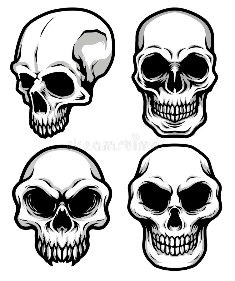 Collection of Detailed Classic Skull Head Black and White Illustration vector illustration