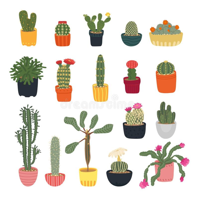 Collection of different cacti isolated on a white background. Houseplants. Blooming cacti. Cartoon cactus set. Vector illustration royalty free illustration