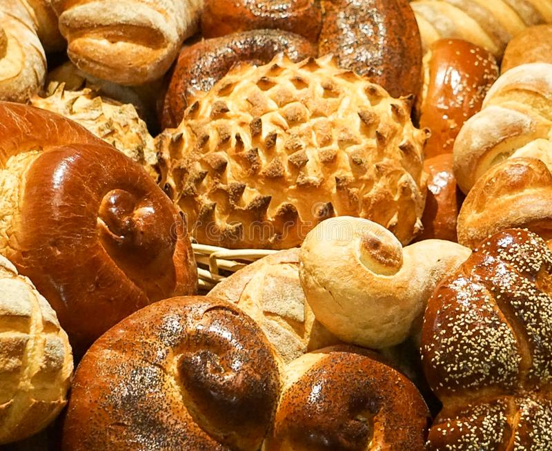 A collection of different types of bread. A collection of a variety of different types of bread stock photo