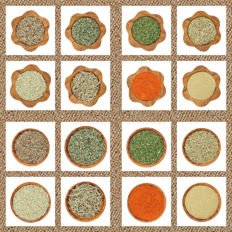 Collection of dry herbs spices stock photography