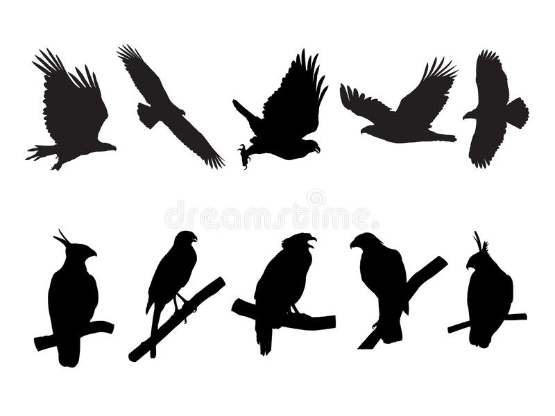 Collection of Eagle, Hawk Bird on tree branch Silhouettes vector illustration