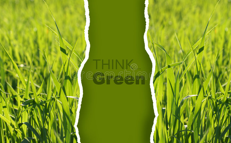 Download Collection Of Eco-friendly Photos Stock Image - Image: 7429541