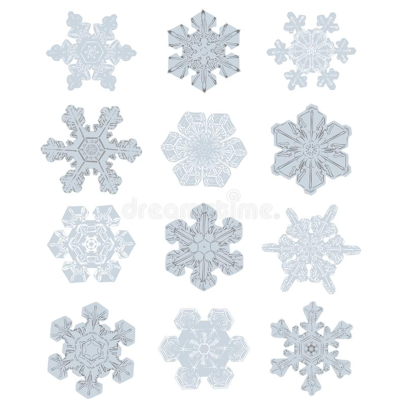 Collection of Extremely Detailed Snowflakes. Nature Alike Design vector illustration