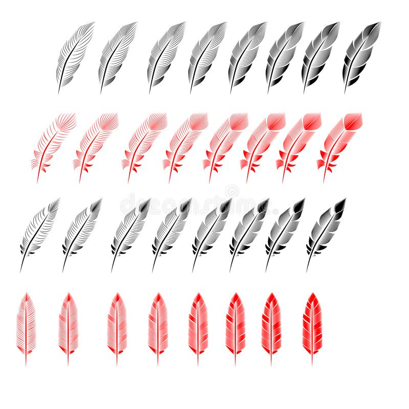 Collection of feather illustration, drawing, engraving stock illustration