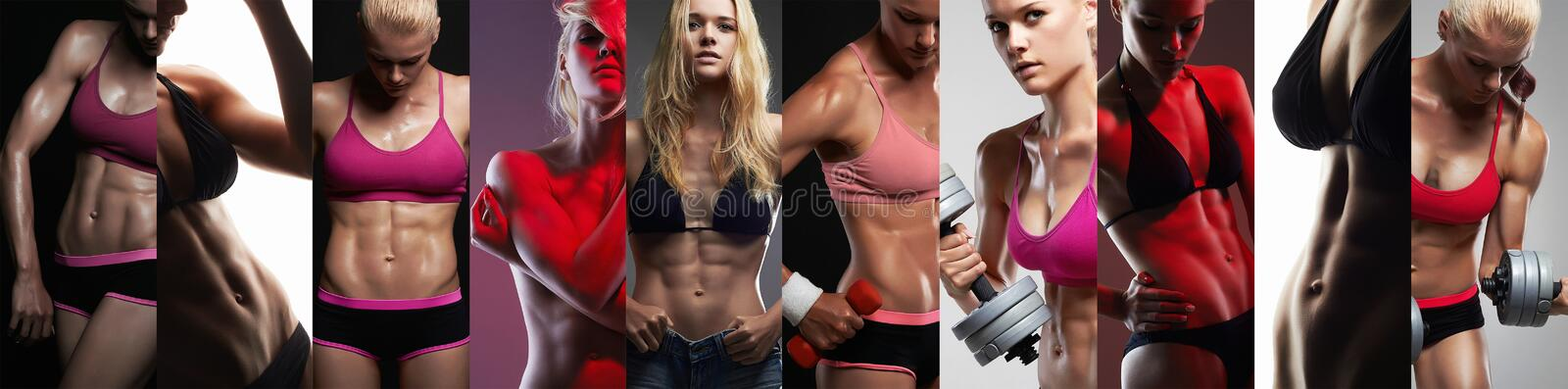 Collection of female sport bodies. Collage muscular girls stock photo