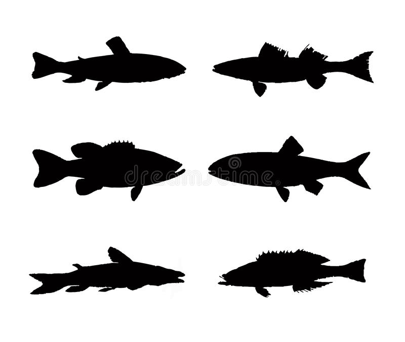 Collection of fish silhouette vector illustration