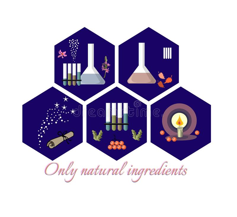 Collection of five hexagonal icons with natural ingredients. vector illustration