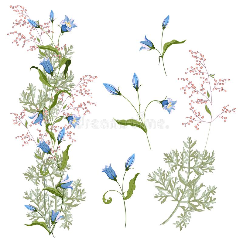 Collection floral bunch of hand drawn wildflowers bluebell and blooming wormwood. Arrangement for design on white background. Vector illustration vector illustration