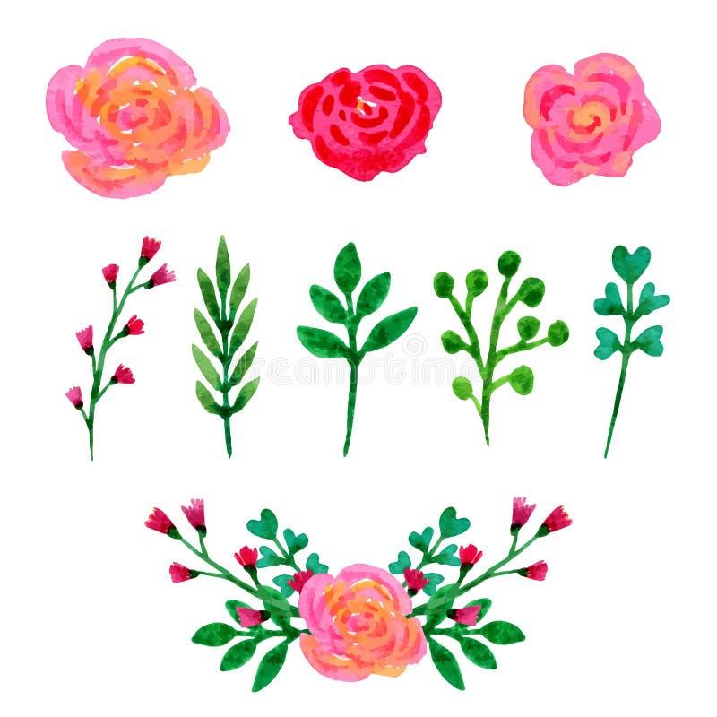 Collection florale d'aquarelle Les fleurs et les feuilles, branches conçoivent l'ensemble d'éléments Vecteur tiré par la main illustration libre de droits