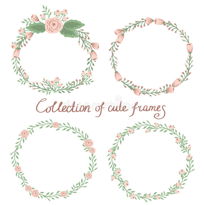 Collection florale de cadre illustration stock