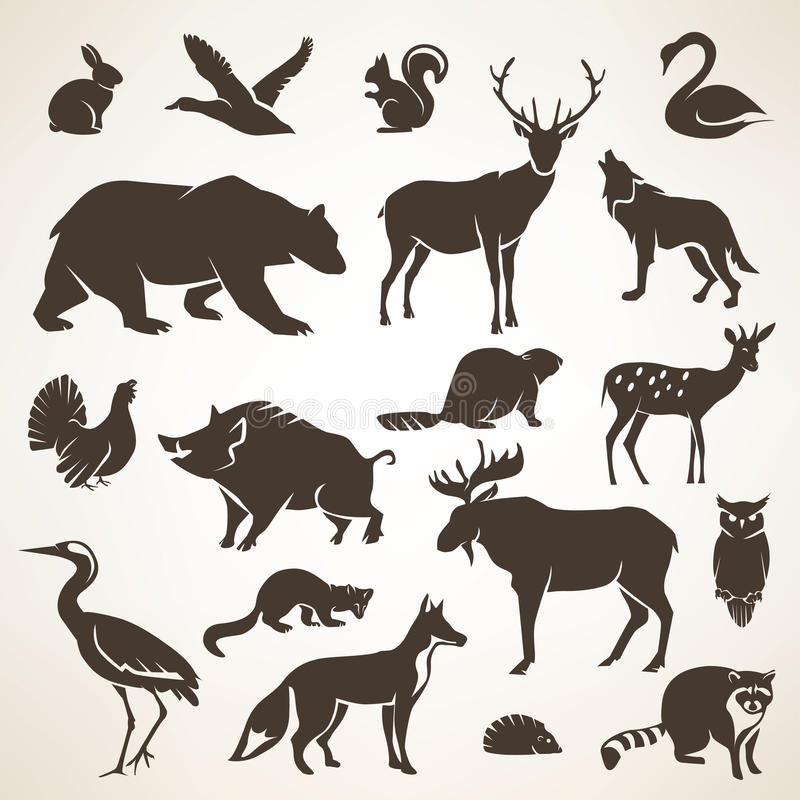 Collection forrest européenne d'animaux sauvages illustration stock
