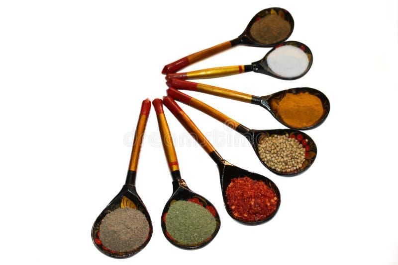 Collection fraîche mélangée d'épices dans la cuillère images libres de droits