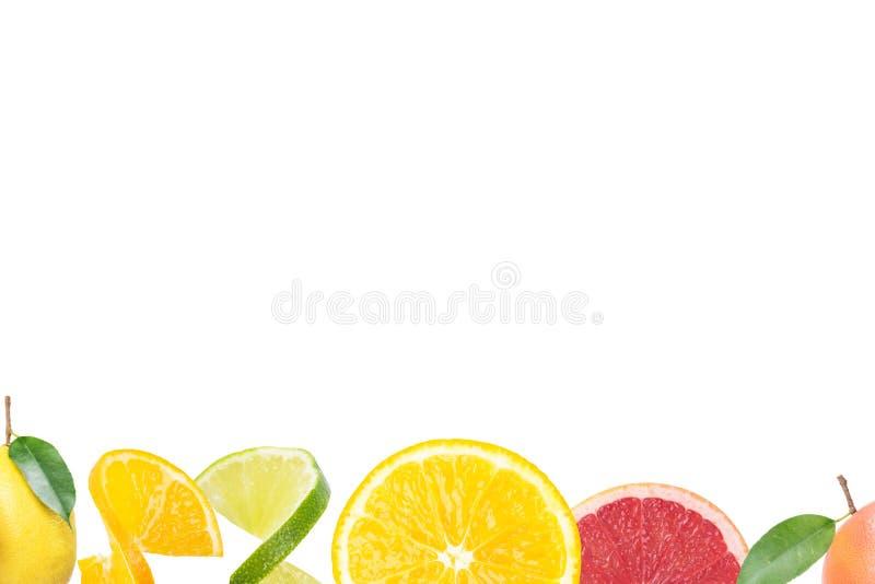 Collection of fresh citrus fruit slices isolated on white bottom. Collage of lemon, grapefruit and orange stock photos