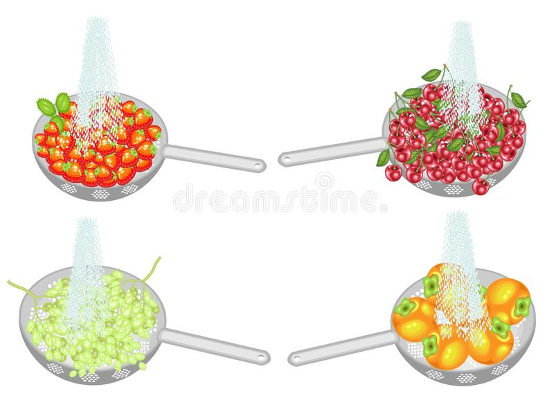 Collection. Fresh fruit is washed under running water. In a colander ripe persimmons, grapes, strawberries, cherries. Collected. Fruits should be eaten clean vector illustration
