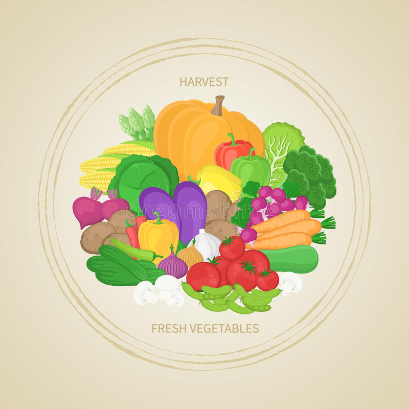 Collection of fresh, healthy vegetables in circle. Autumn harvest. Label, sticker, banner for design. Natural healthy food concept. Collection of fresh, healthy royalty free illustration