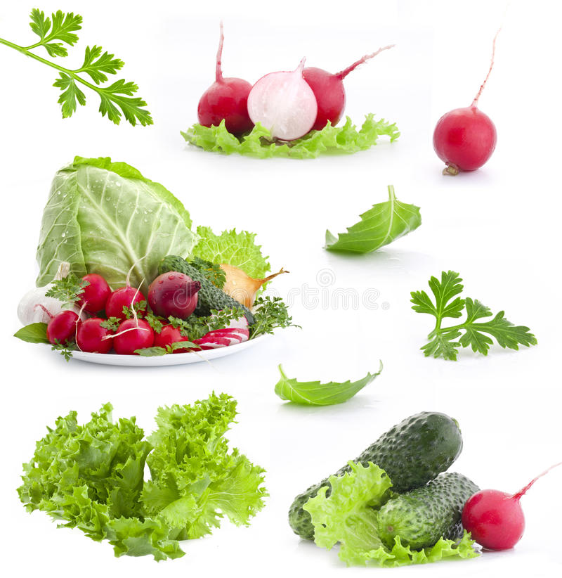 Collection of fresh vegetables stock photos