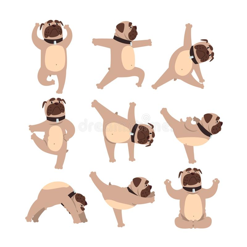 Funny bulldog in different poses of yoga. Healthy lifestyle. Dog doing physical exercises. Cartoon domestic animal royalty free illustration