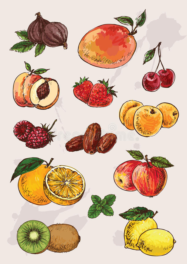 Collection of hand drawing fruits royalty free illustration