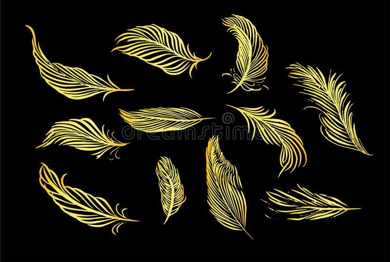 Collection of hand drawn feather. Set of decorative animals birds feathers. Hand drawn vector art. Brush pen gold ink illustration stock illustration