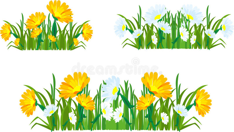 Download Collection Of Herbs And Flowers Stock Vector - Image: 24744051