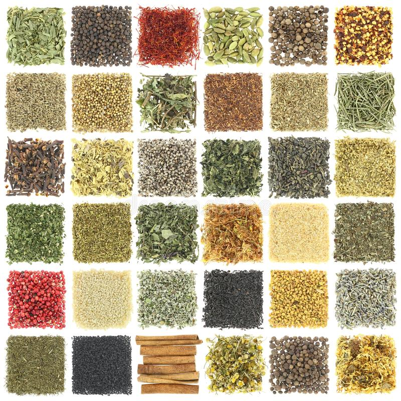Collection of herbs and spices stock images