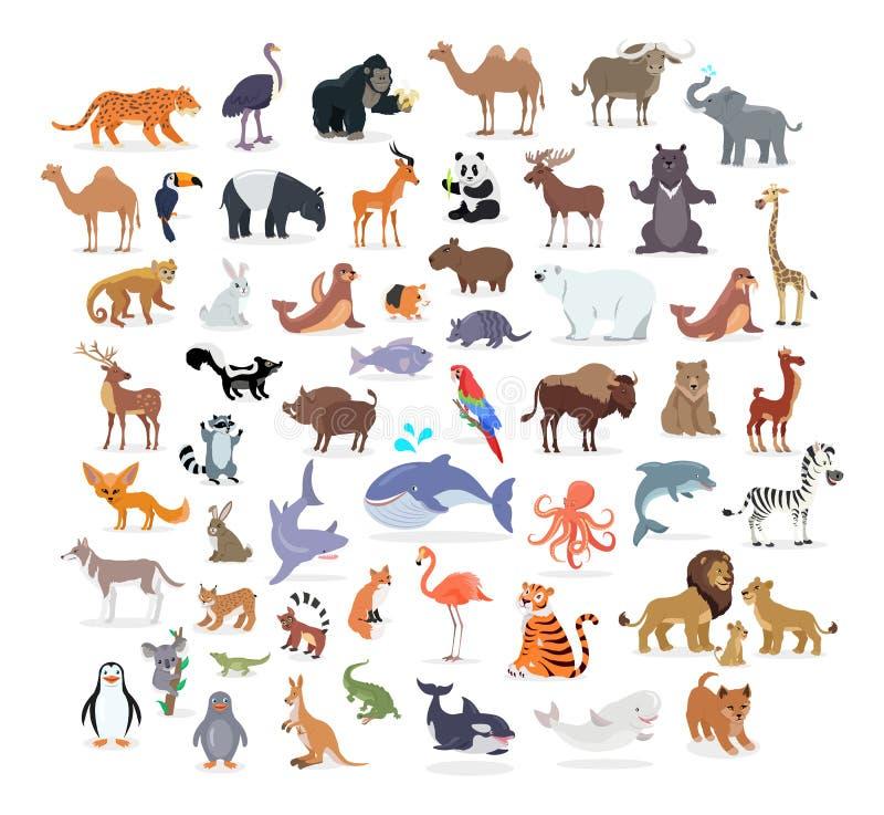 Collection intégrale animale de portraits sur le blanc illustration stock