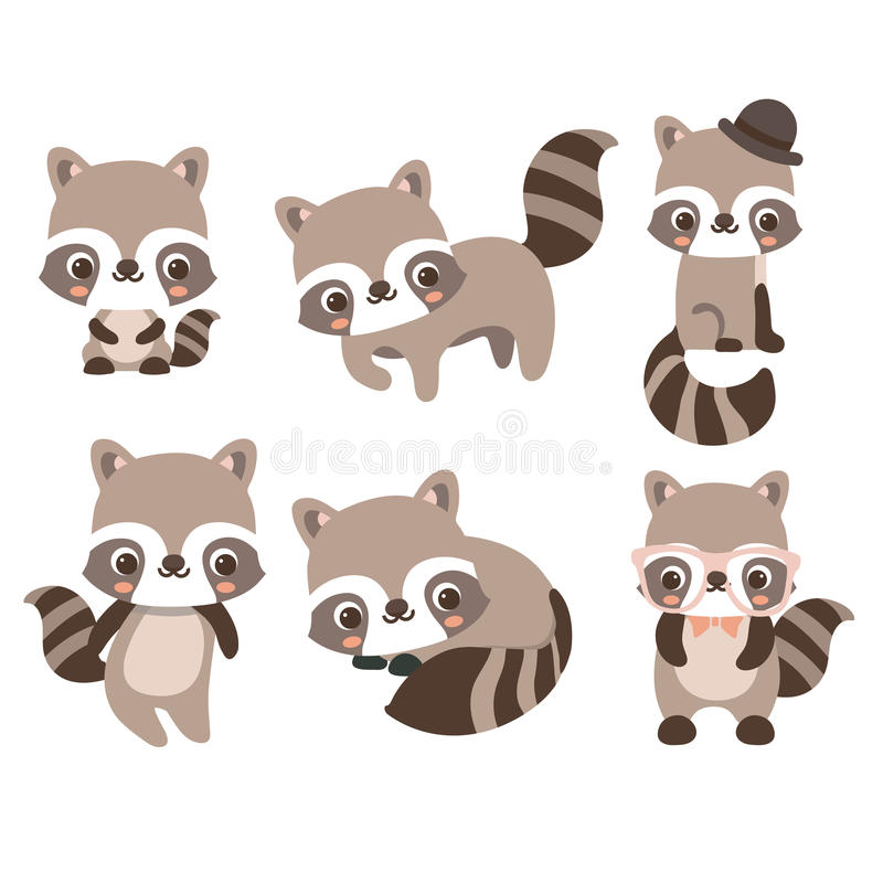 Collection isolated funny raccoon. royalty free illustration