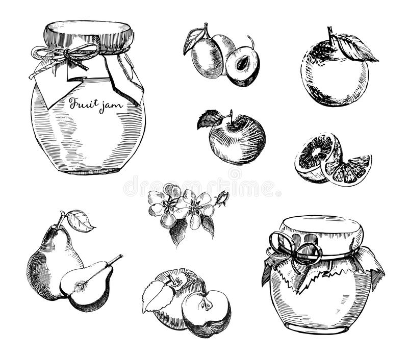 Collection of jar of jam with plum, apple, jam with pear and orange. Vector hand drawn sketch illustration.Fruit jam. royalty free illustration