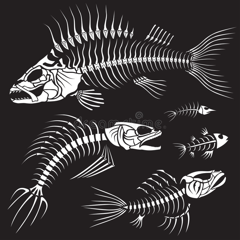 Collection mauvaise de Sceleton de poissons illustration libre de droits