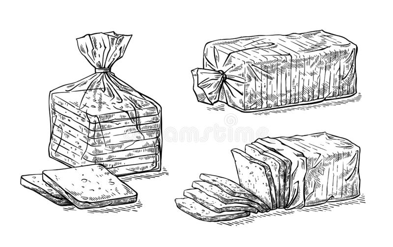 Collection of natural elements of sliced toast bread and cellophane package sketch. Vector illustration royalty free illustration