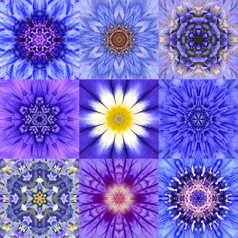 Collection of Nine Blue Concentric Flower Mandalas Kaleidoscope stock illustration