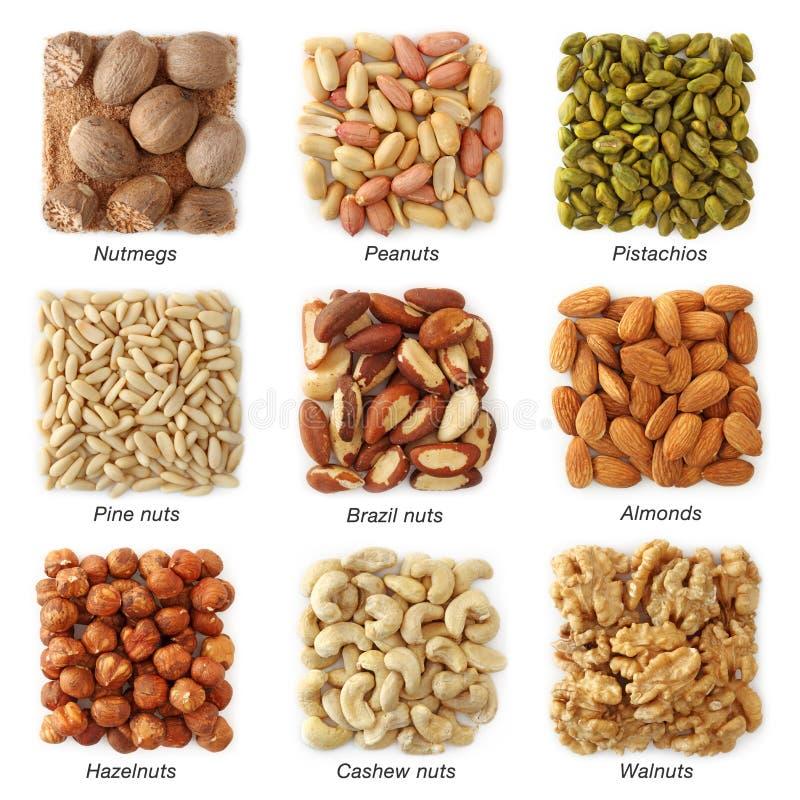 Collection Nuts image libre de droits