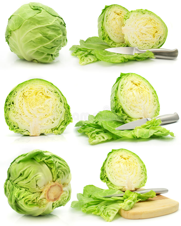 Free Collection Of Green Cabbage Vegetables Isolated Royalty Free Stock Photo - 5339345
