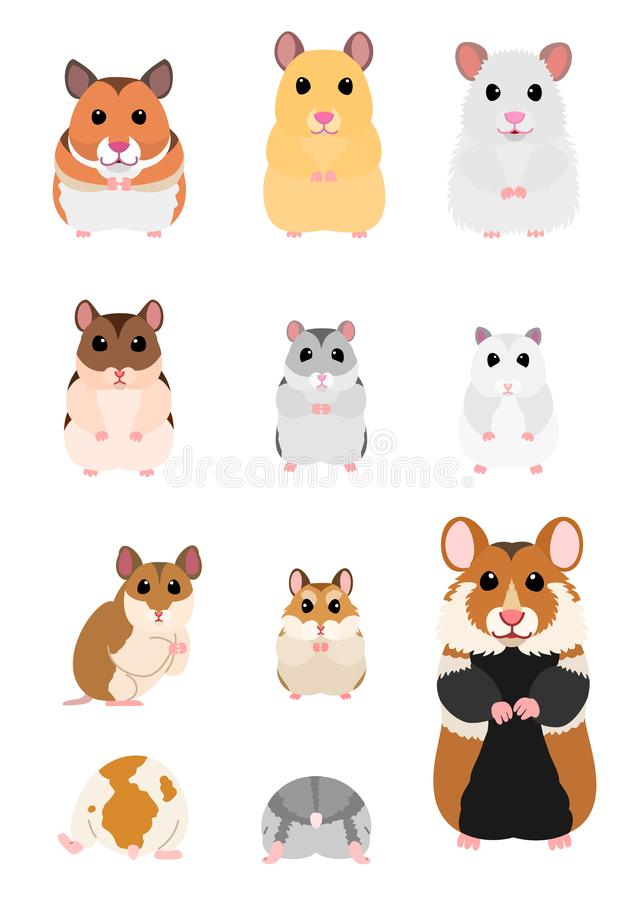Free Collection Of Hamster Breeds Royalty Free Stock Images - 135389839