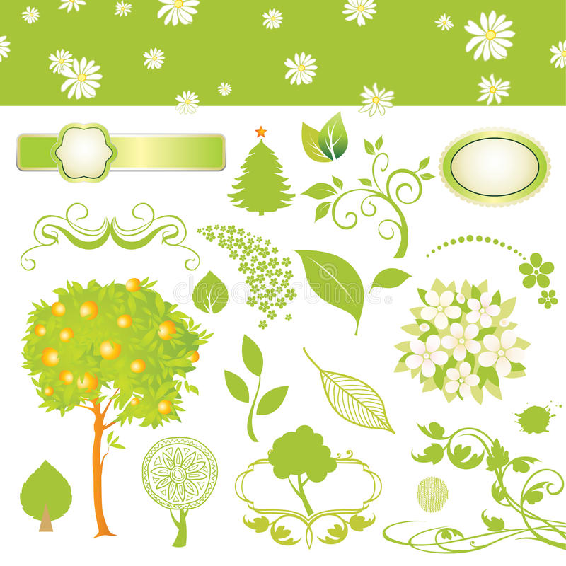 Free Collection Of Leaf And Tree Stock Photos - 11248703