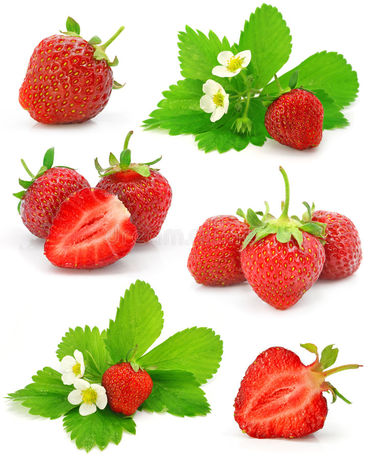 Free Collection Of Red Strawberry Fruits Isolated Royalty Free Stock Image - 5411536