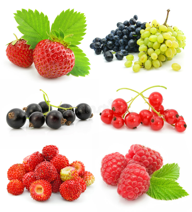 Free Collection Of Ripe Berry Fruits Isolated Stock Images - 6764384