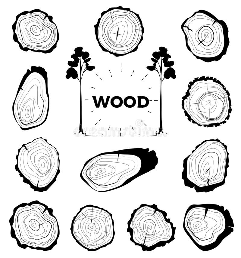 Free Collection Of Tree-rings. Set A Cross Section Of The Trunk With Tree Rings. Vector Illustration. Logo. Tree Growth Rings Stock Photo - 147282810