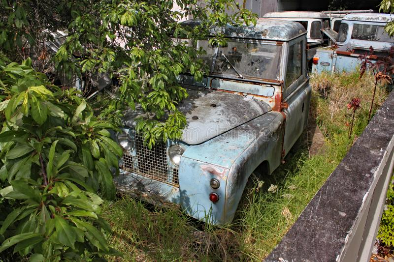 A collection of old rusty Land Rover Defenders in a garden with trees and bushes growing around them stock photography