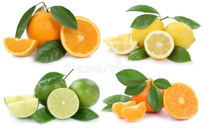 Collection of oranges lemons fruits isolated on white stock image