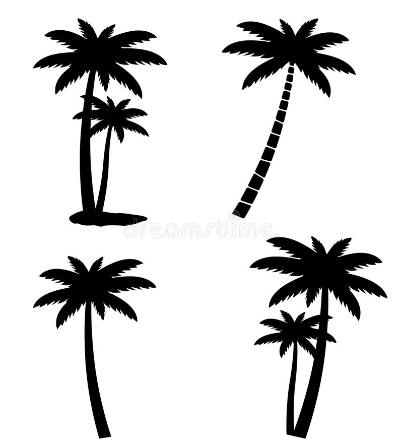 Collection of palm trees isolated on white background. Illustration stock illustration
