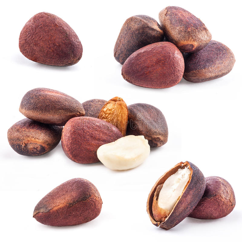 Collection of Pine nuts stock photos